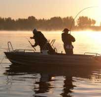 Волга рыбалка