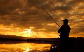 Кормушки для ловли леща на течении