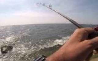 Ловля на джиг с берега