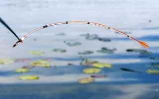 Как ловить на мормышку летом