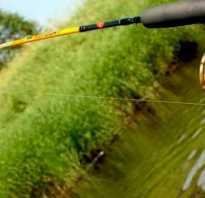 Как ловить на спиннинг
