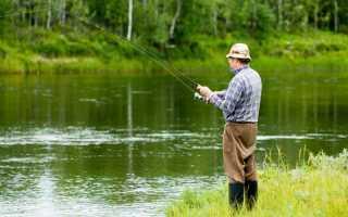 Виды ловли рыбы