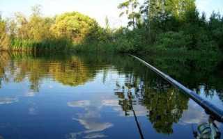 Ловля леща с лодки на озере