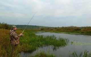 Как ловить щуку на спиннинг с берега
