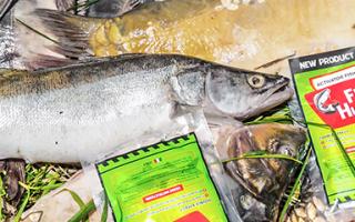 Fishhungry развод или нет