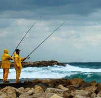 В какой ветер не клюет рыба