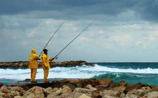 Клюет ли рыба при восточном ветре