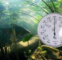 Какое атмосферное давление нормальное для рыбалки