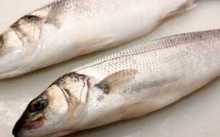 Где водится рыба сибас