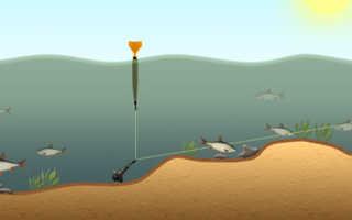 Как промерить глубину фидером