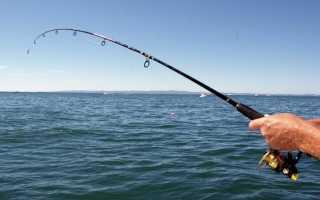 Как поймать амура в пруду