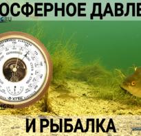 Какое атмосферное давление лучше для рыбалки