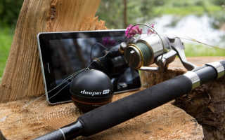 Как выбрать эхолот для рыбалки
