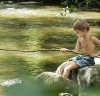 Всё о рыбалке для начинающих