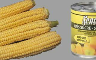 Как насаживать кукурузу на крючок на карпа
