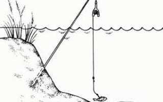 Как сделать летнюю жерлицу на щуку