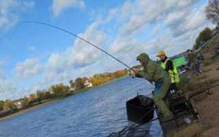 Как рыбачить