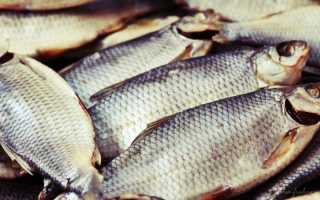 Засолка рыбы для сушки