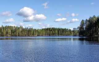 Затейливое озеро рыбалка