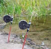 Как ловить на резинку с берега видео