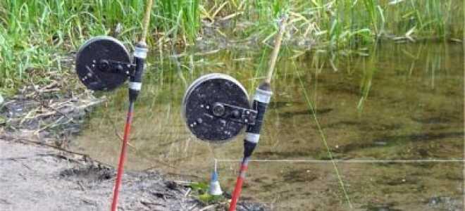 Как ловить рыбу на резинку с берега