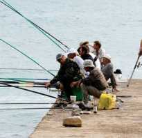 Блог рыбалка
